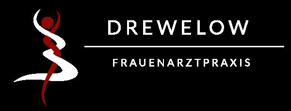 Frauenärzte Drewelow Bützow
